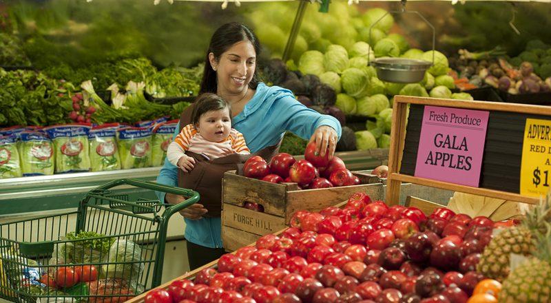 Publican guía sobre Programas de alimento y nutrición en Carolina del Norte